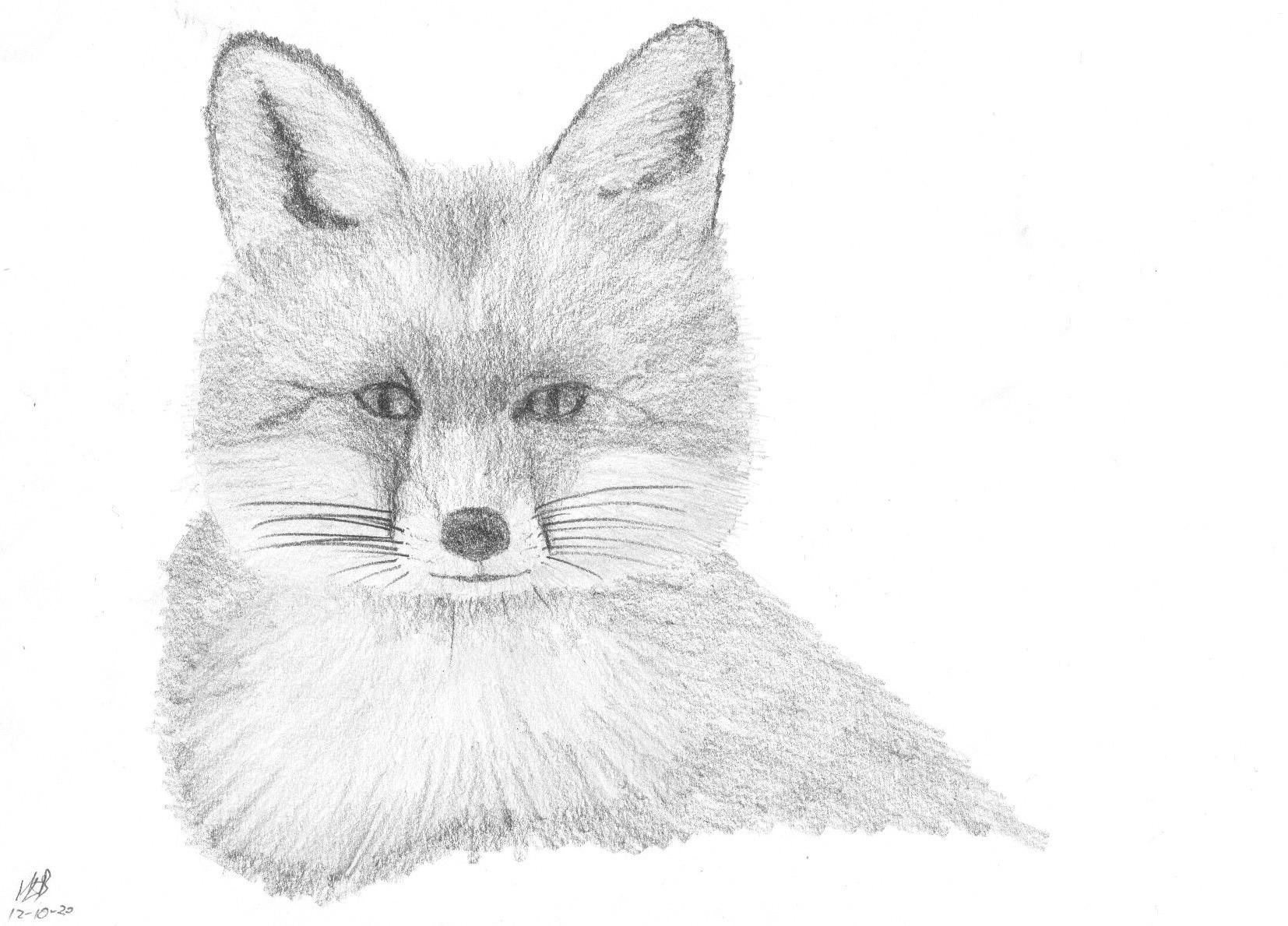 Fox12Oct20