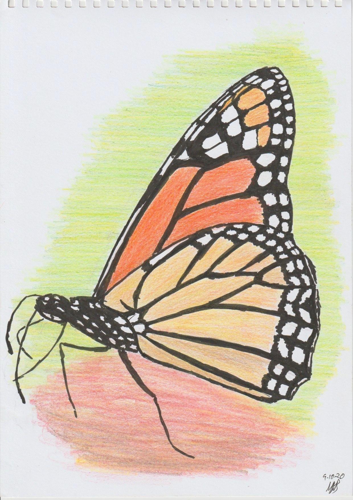 Monarch9Oct20