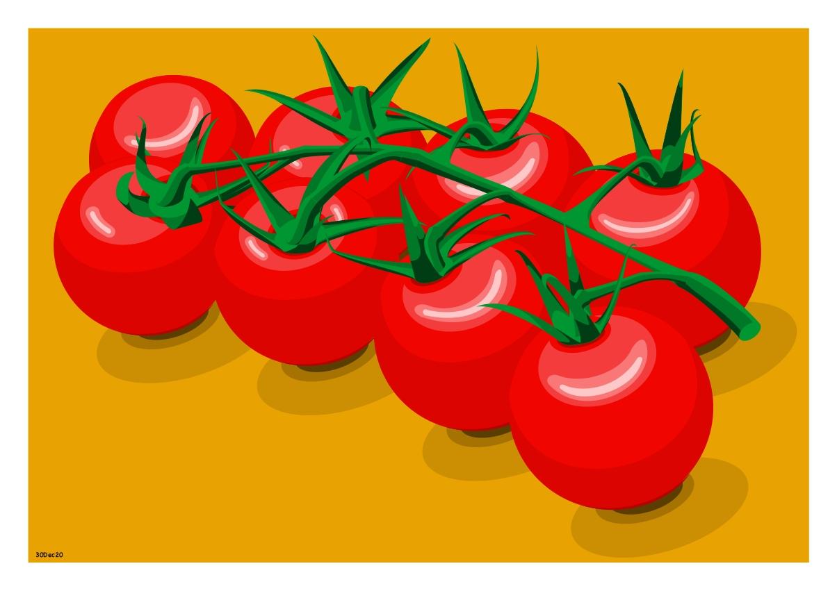 Tomatoes_Vector_30Dec20